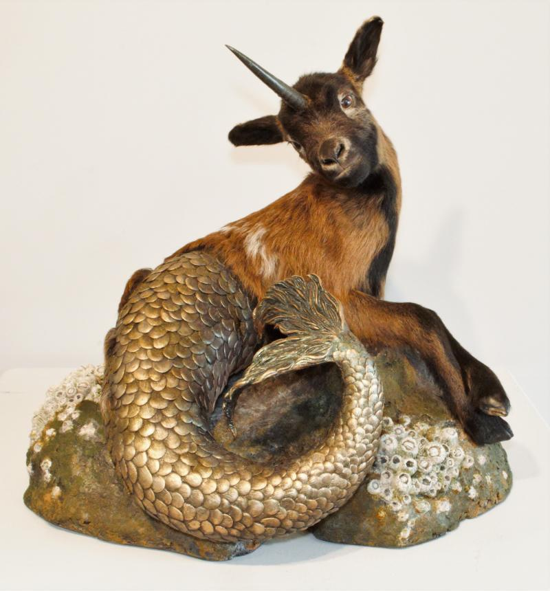 Unicapricorn, taxidermy and mixed media by Jana Merten of North Branch, MN