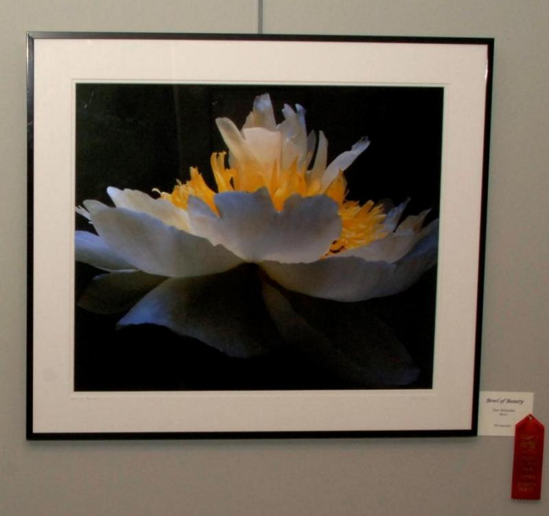 "Second Place Photography - ""Bowl of Beauty"", by Dee Kotaska of Mora"