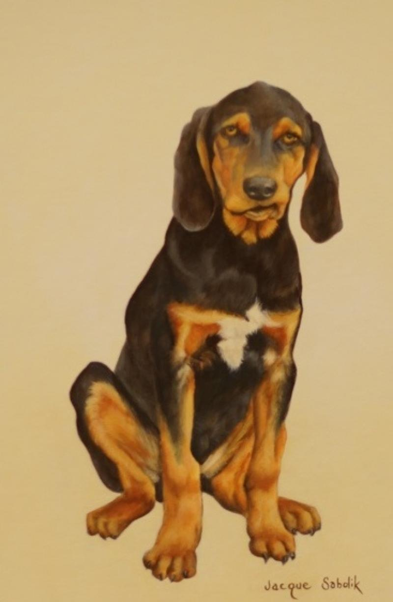 'Nothin but a Hound Dog by Jacque Sabolik - Artistic Merit Award (2nd Place)