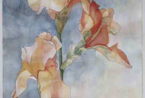 Apricot Afternoon II by Jean Crocker - Merit and Purchase Award, Painting Transparent