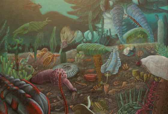 Suface Zero... The Cambrian Explosion, colored pencil by Mike Menasco of North Branch, MN