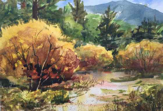 Pine Creek Willows by Christina Thurston - Excellence Award, Painting Transparent